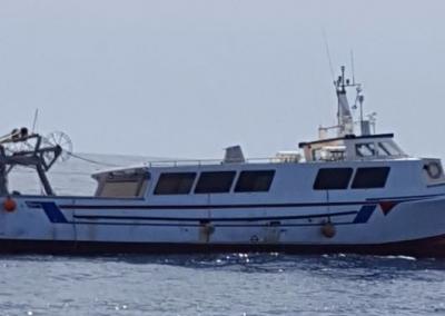Toni II BA-1-4-91