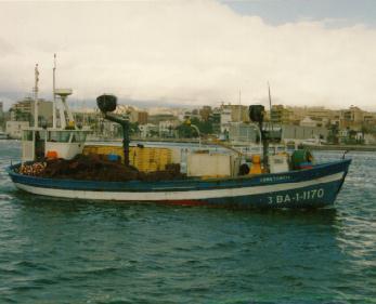 Constancia BA-1-1170