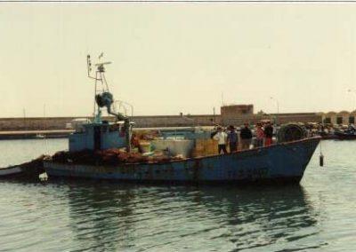 Pachinando TA-3-2407