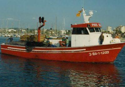 Peix Blau BA-1-1209